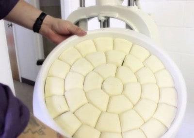 Erika Record Dough Hand Divider | 36 Part