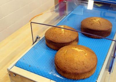 Cake Slabber | Round & Linear Cakes