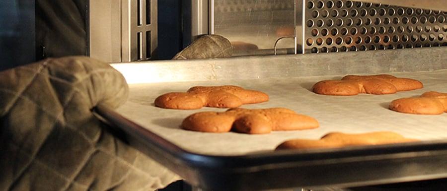 differences between convection deck ovens nj baking equipment. Black Bedroom Furniture Sets. Home Design Ideas